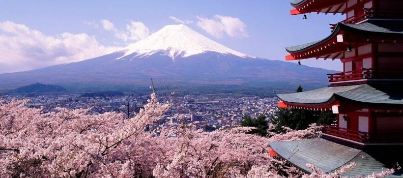 Japan: Toyko & Kyoto